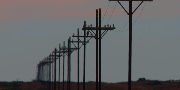 Utility Switching Leads